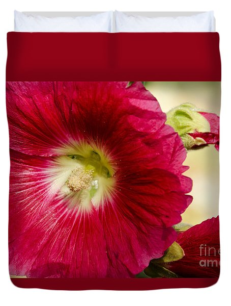 Red Hollyhock Althaea Rosea Duvet Cover by Sue Smith
