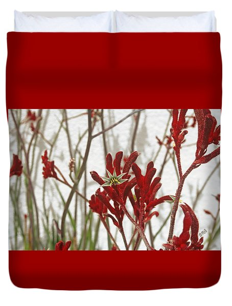 Red Kangaroo Paw Duvet Cover by Ben and Raisa Gertsberg