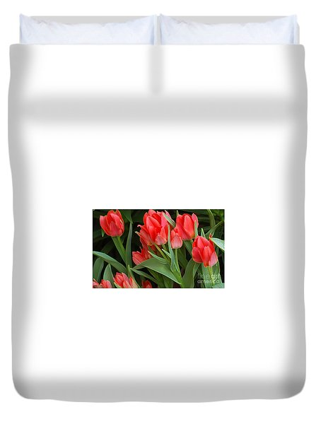 Red Ladies Duvet Cover by Kathleen Struckle