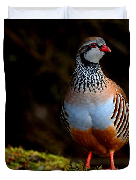 Red-legged Partridge Duvet Cover
