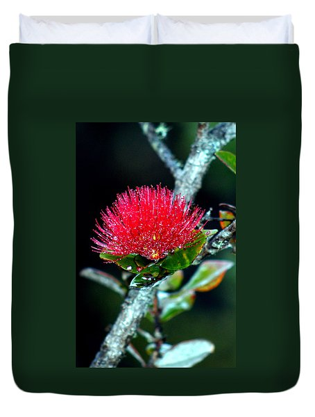 Red Ohia Lehua In Hawaii Volcano Mist Duvet Cover
