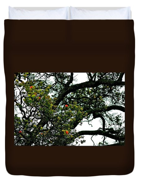 Red Ohia Lehua Tree Duvet Cover