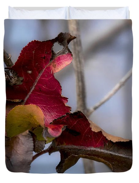 Red Over Branch Duvet Cover
