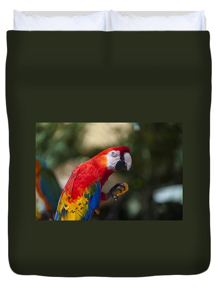 Red Parrot  Duvet Cover by Garry Gay