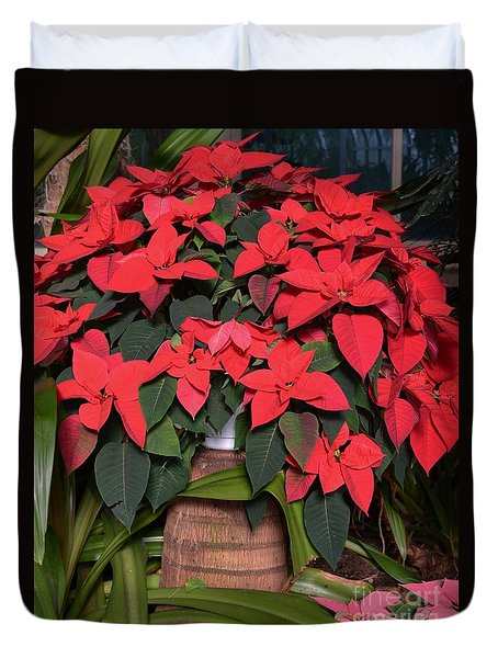 Red Poinsettia Duvet Cover by Kathleen Struckle