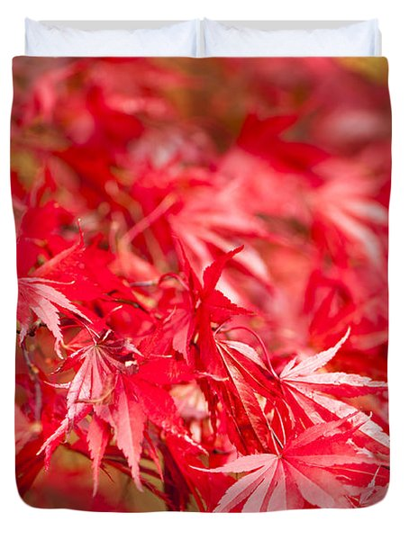 Red Red Red Duvet Cover by Anne Gilbert