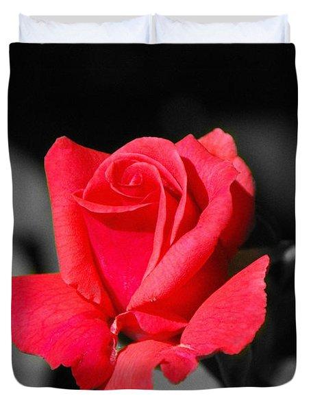 Red Red Rose - Sc Duvet Cover