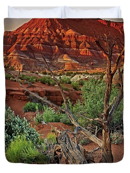 Duvet Cover featuring the photograph Red Rock Butte And Juniper Snag Paria Canyon Utah by Dave Welling