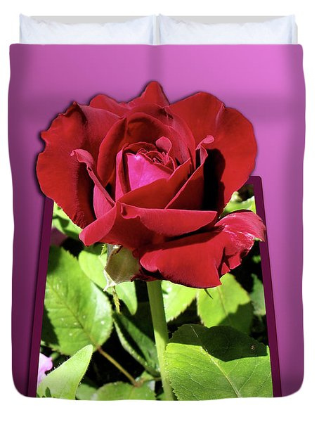 Red Rose Duvet Cover by Thomas Woolworth