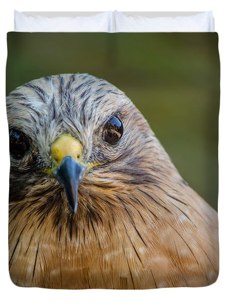 Red Shouldered Hawk Duvet Cover
