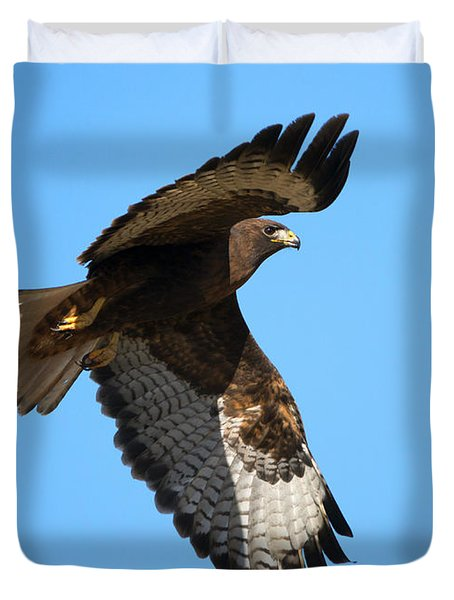 Red-tail Flight Duvet Cover by Mike Dawson