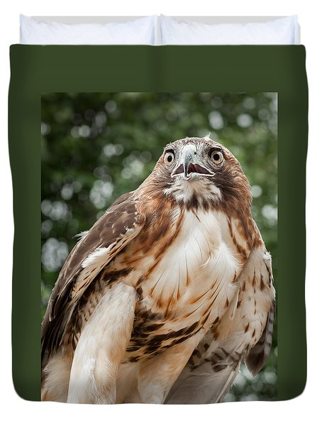 Red Tail Hawk Duvet Cover by Bill Wakeley