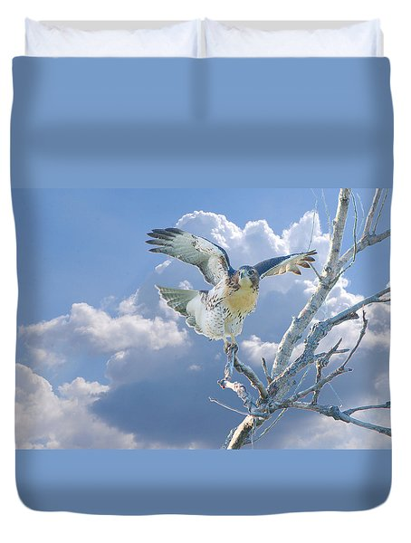 Red-tailed Hawk Pirouette Pose Duvet Cover by Roy Williams