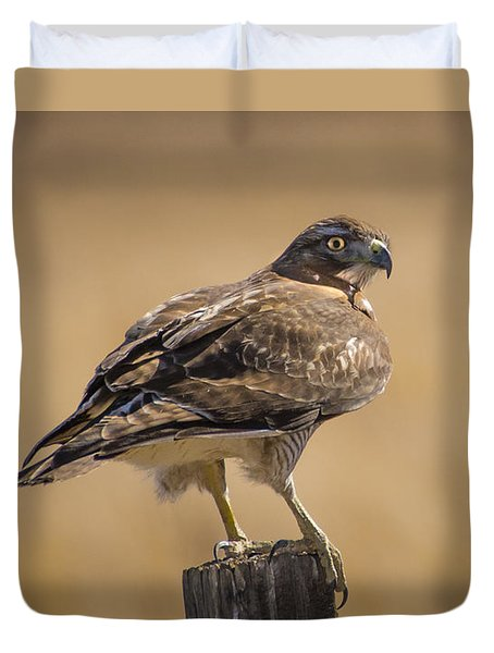 Red Tailed Hawk Watching Duvet Cover