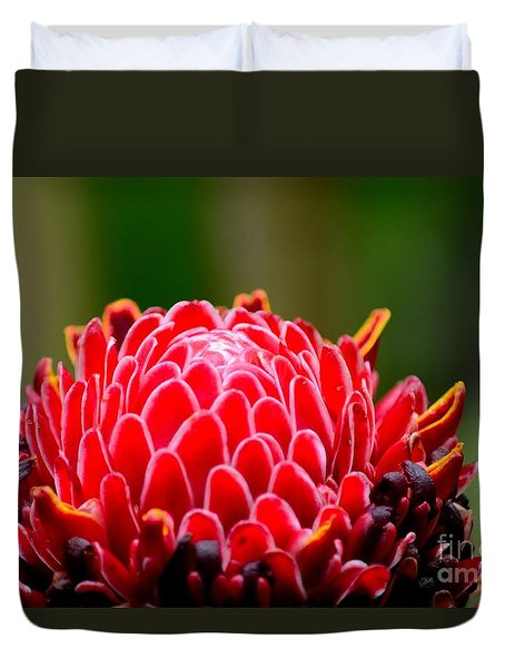 Red Torch Ginger Flower Head From Tropics Singapore Duvet Cover by Imran Ahmed
