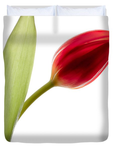 Red Tulip Duvet Cover by Dave Bowman