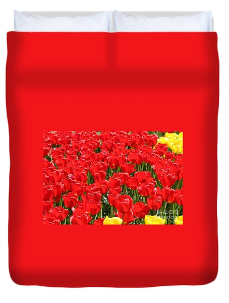 Red Tulip Field Duvet Cover by Tap On Photo