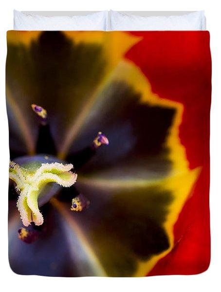 Red Tulip Macro Duvet Cover by Adam Romanowicz