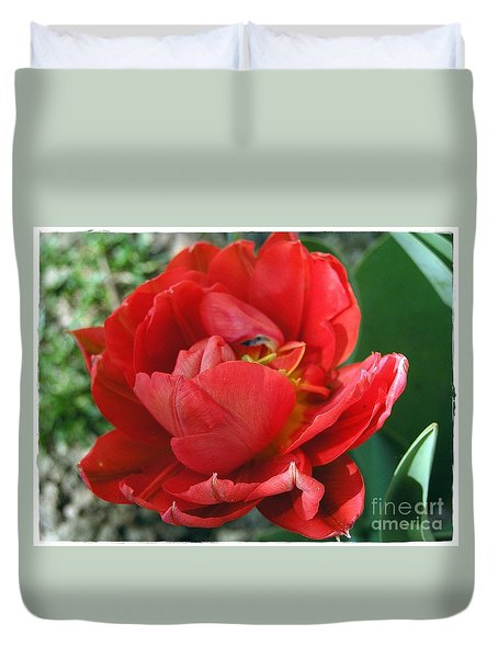 Duvet Cover featuring the photograph Red Tulip by Vesna Martinjak