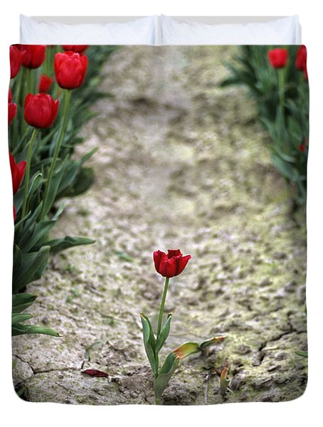 Red Tulips Duvet Cover by Jim Corwin