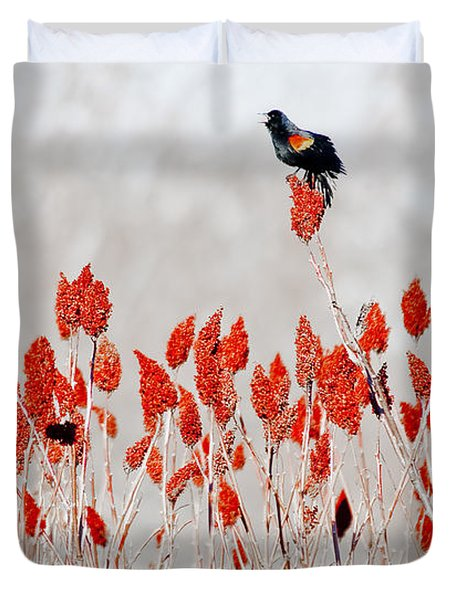 Red Winged Blackbird On Sumac Duvet Cover