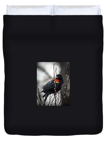 Red Winged Blackbird In Pussy Willows Duvet Cover by Patti Deters