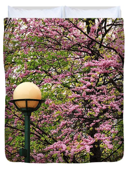 Redbud And Lamp Duvet Cover