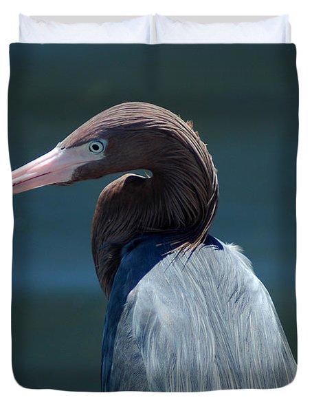 Reddish Egret 3 Duvet Cover