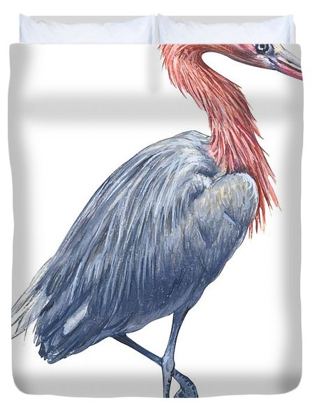 Reddish Egret Duvet Cover by Anonymous