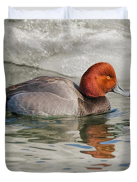 Redhead Duck On Ice  Duvet Cover