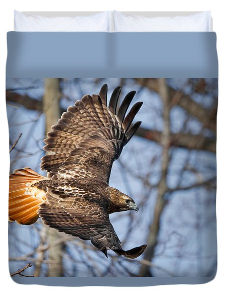Redtail Hawk Duvet Cover by Bill Wakeley