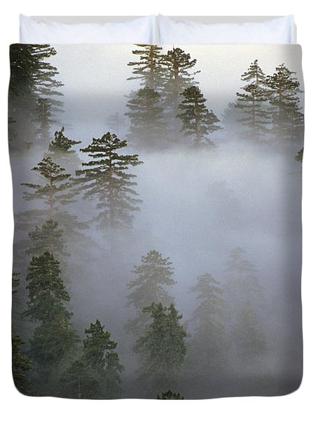 Redwood Creek Overlook With Giant Redwoods  Duvet Cover