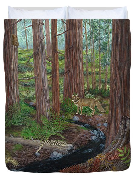 Redwood Forest Duvet Cover by Carlyn Iverson