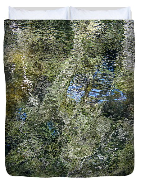 Reflection Art Duvet Cover by Roxy Hurtubise