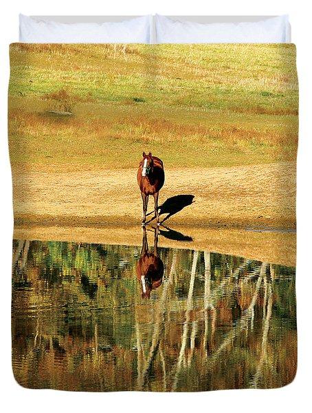 Reflection Duvet Cover by Carol Lynn Coronios