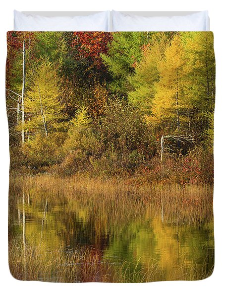 Reflection Of Trees In A Pond, Alger Duvet Cover