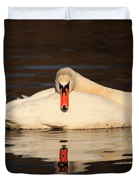 Reflections Of A Swan Duvet Cover by Karol Livote