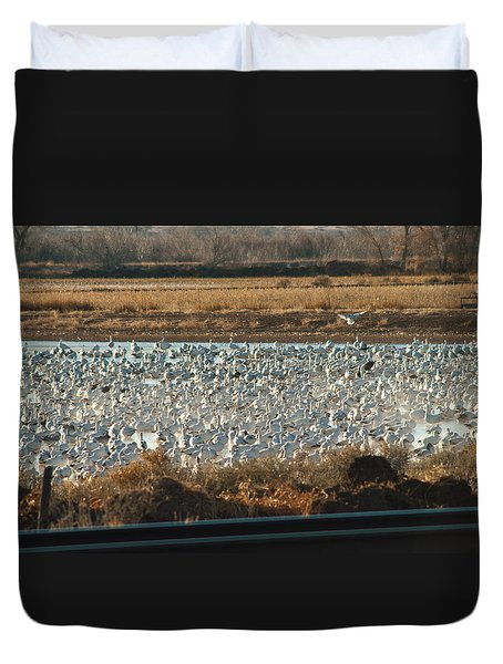 Refuge View 3 Duvet Cover
