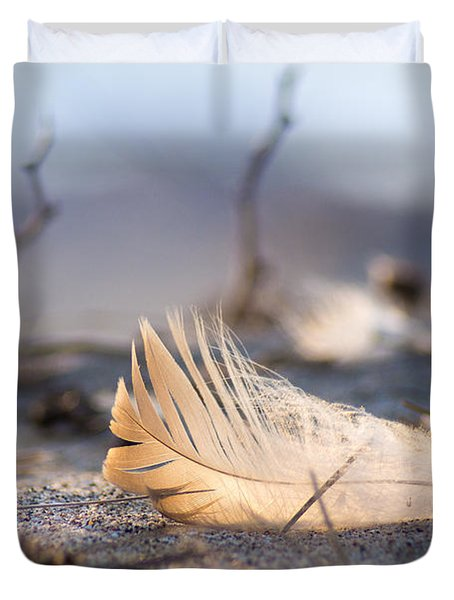 Remnants Of Icarus Duvet Cover by Bill Pevlor