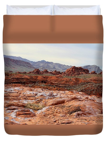 Duvet Cover featuring the photograph Remote by Tammy Espino