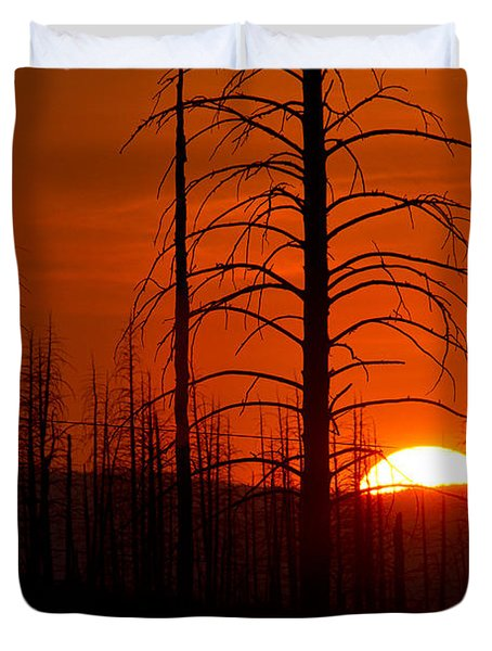 Requiem For A Forest Duvet Cover by Jim Garrison