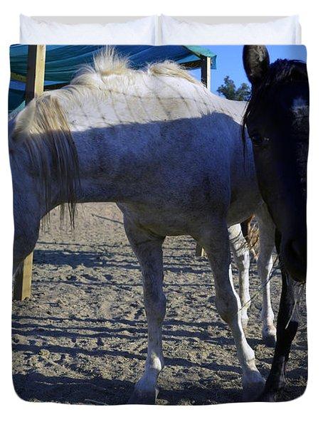 Rescued Mustangs Duvet Cover