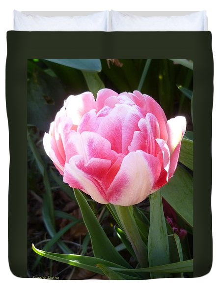 Resplendent Cherry Pink Tulip Duvet Cover by Lingfai Leung