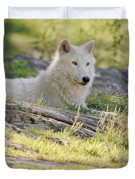 Duvet Cover featuring the photograph Resting Arctic Wolf by Wolves Only