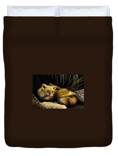Resting Fox Duvet Cover