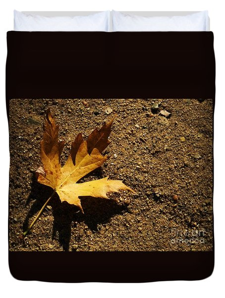 Duvet Cover featuring the photograph Resting Shadow Sands by J L Zarek