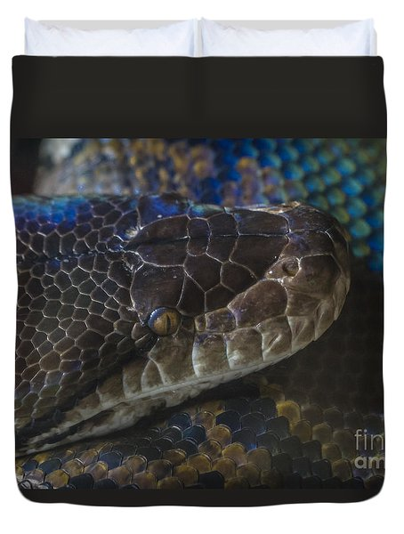 Reticulated Python With Rainbow Scales Duvet Cover