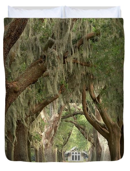 Retreat Avenue Of The Oaks Duvet Cover by Adam Jewell