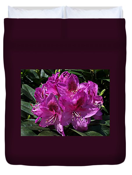 Rhododendron ' Anah Kruschke ' Duvet Cover by William Tanneberger