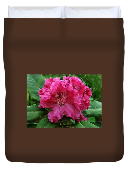 Rhododendron ' Bessie Howells ' Duvet Cover by William Tanneberger